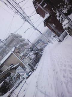 雪だっっ!